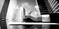 Compliance Management 5